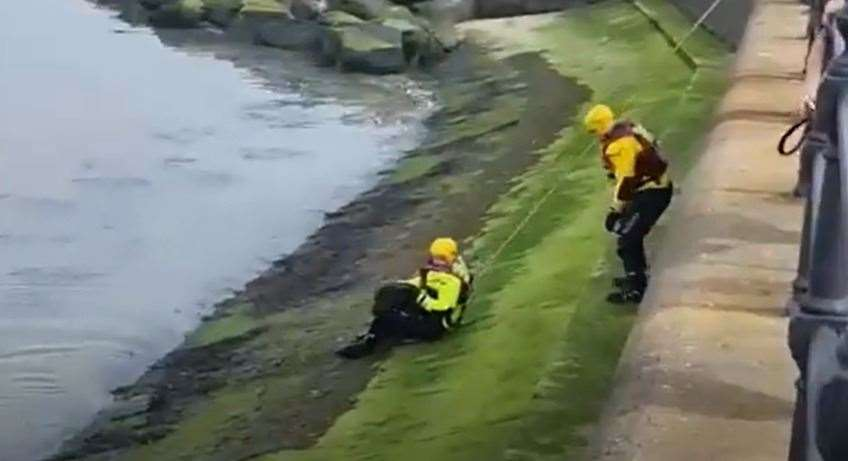 Pup rescued by firefighters in Herne Bay. Picture: Kent Fire and Rescue Service