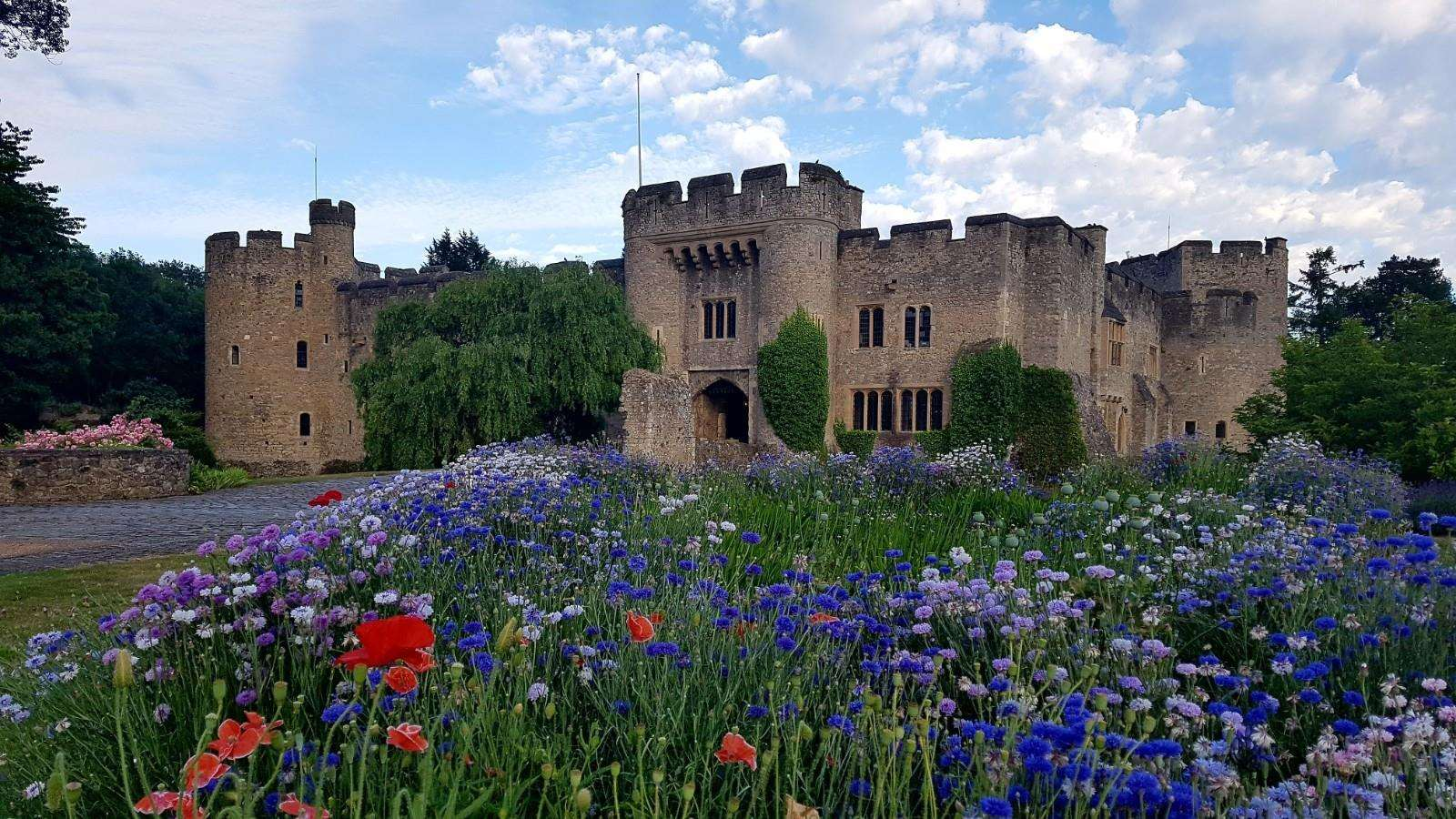 Allington Castle in Maidstone hosted the launch event