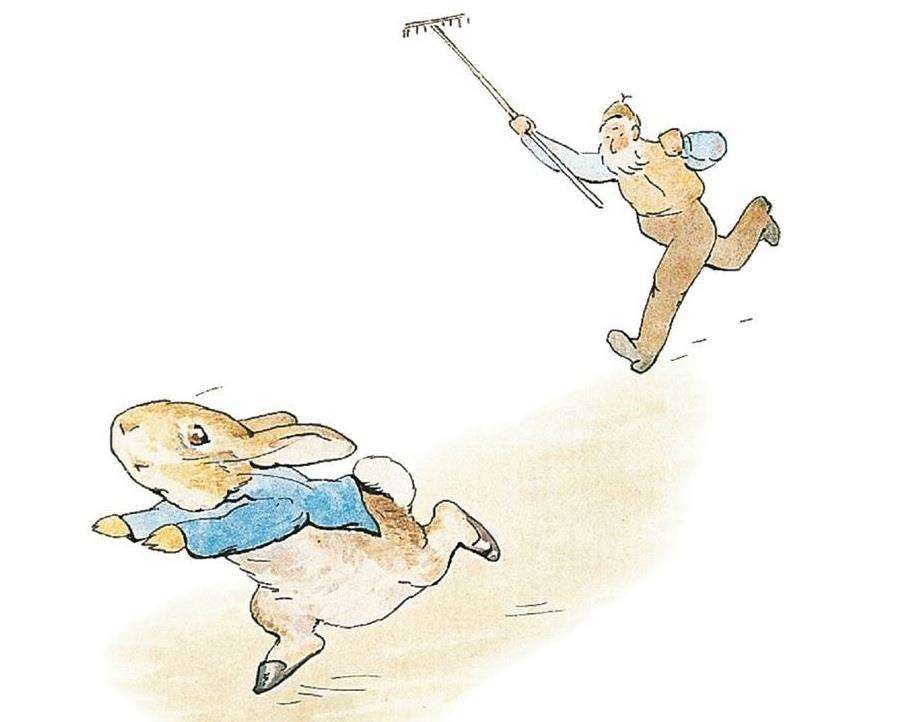 Stop Thief! illustration taken from The Tale of Peter Rabbit Picture: Frederick Warne and Co