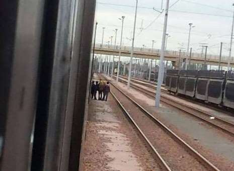 Migrants spotted by the tracks in Calais. Picture: @daftnelly.