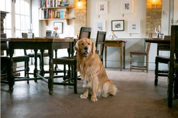 The Corner House in Minster is now dog-friendly