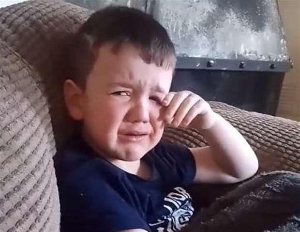 Video of ed sheeran fan freddie fleming goes viral freddies reaction to ed sheeran not being number one stopboris Images