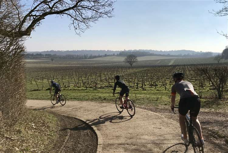 Cycle the Vineyards tours by Will Males