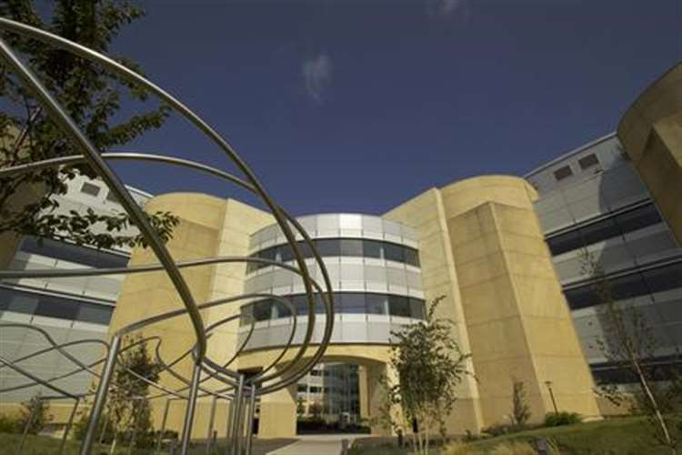 Hundreds of jobs safeguarded at Pfizer site