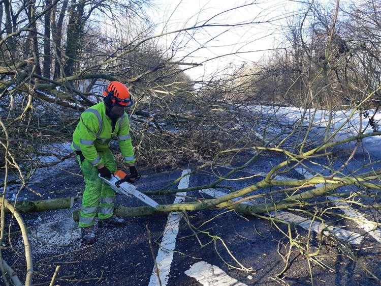 Tree surgeon Sam Gray tackling the fallen trees (6931296)