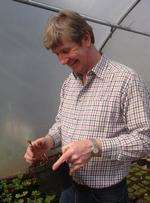 Roger Platts delights at seeing a young plant unfurl in the first April sunshine.