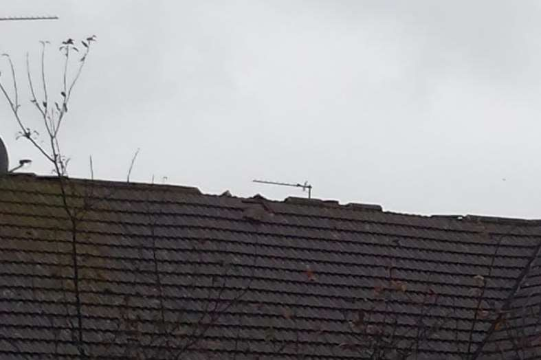 Strong winds blew the tiles off the roof in Warren Wood
