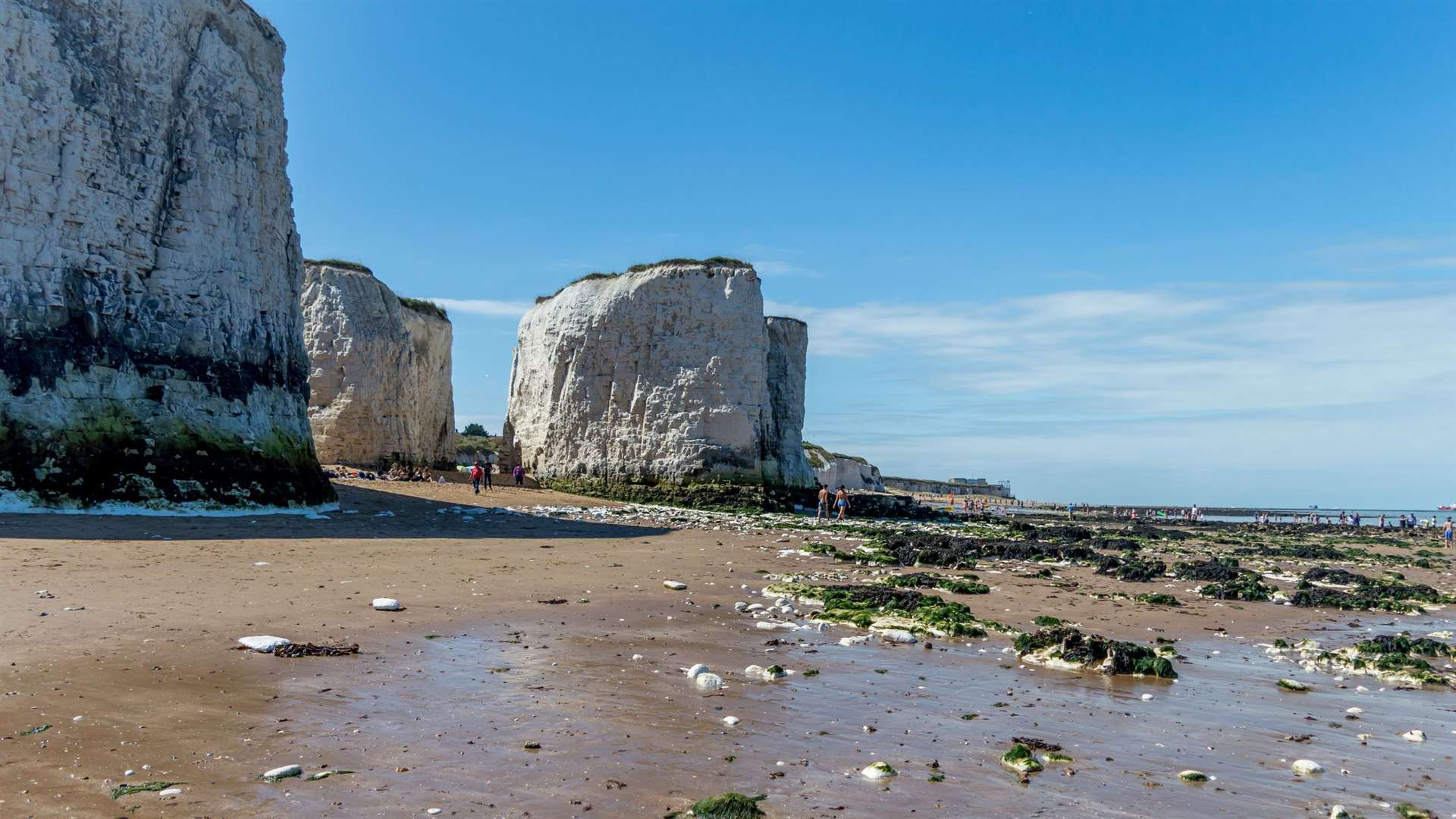 The rave, planned for Botany Bay, could spread infection and create a lot of litter and noise