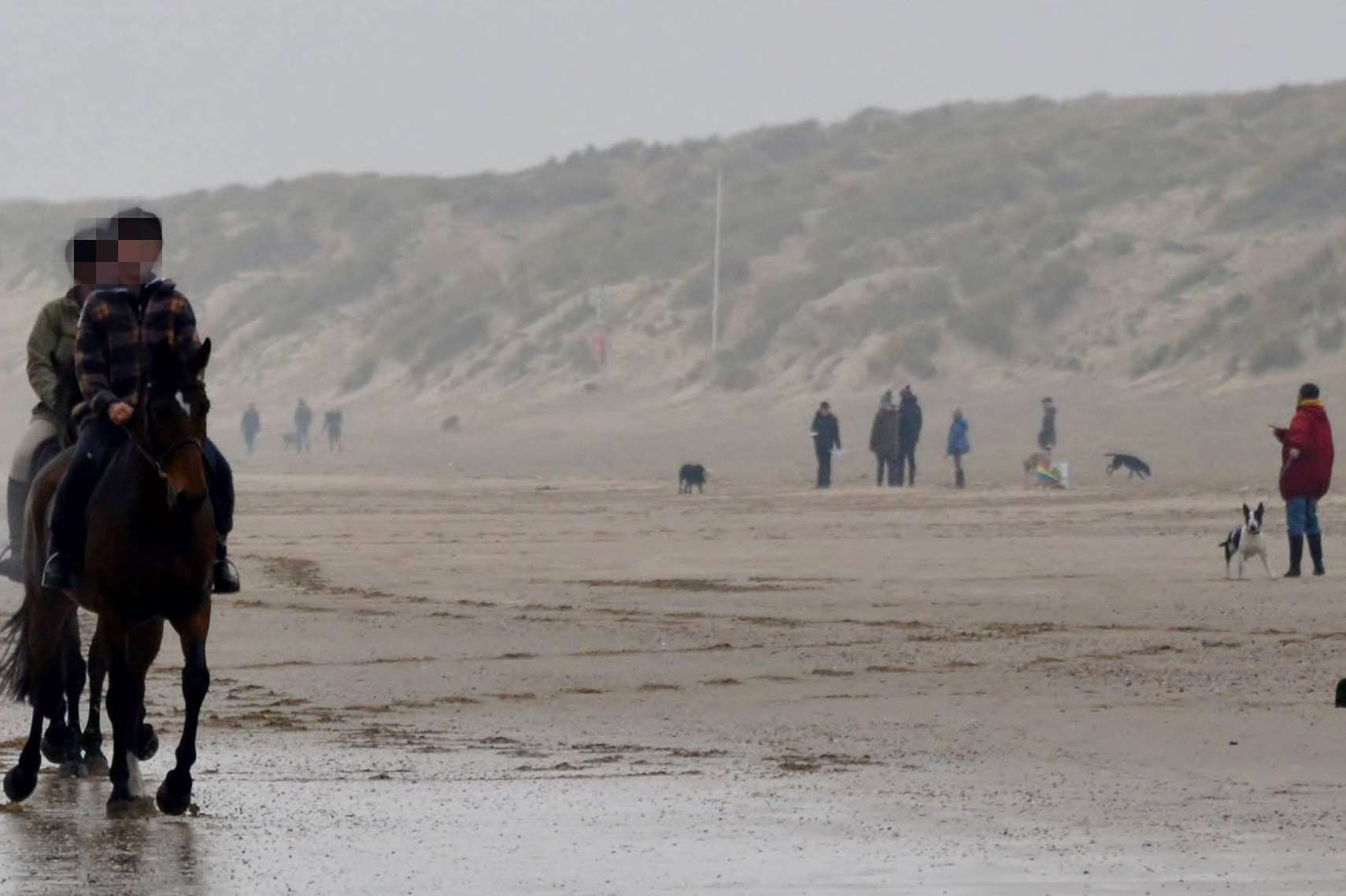Police were called and took statements from walkers out on the beach on New Year's Eve