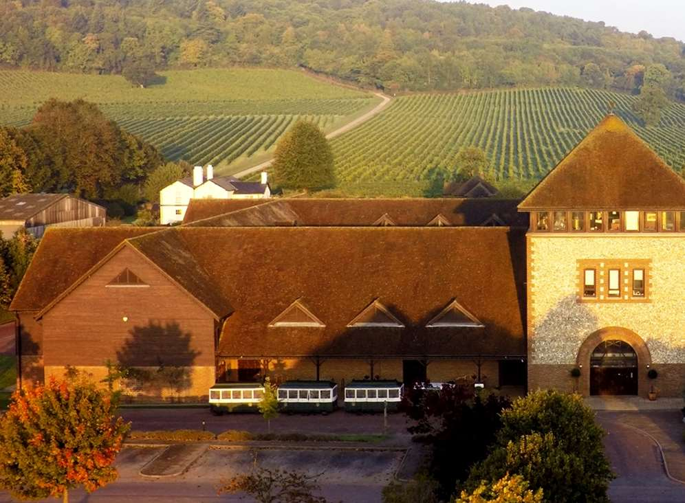 Denbies' south-facing slopes, chalky soil and micro-climate made it ideal for creating England's largest vineyard.