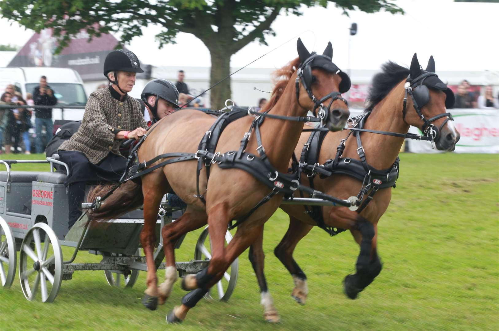 A scurry driving competition at a previous Kent County Show Picture: John Westhrop
