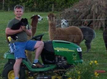 With some of his 22 alpacas in New Zealand before life changed