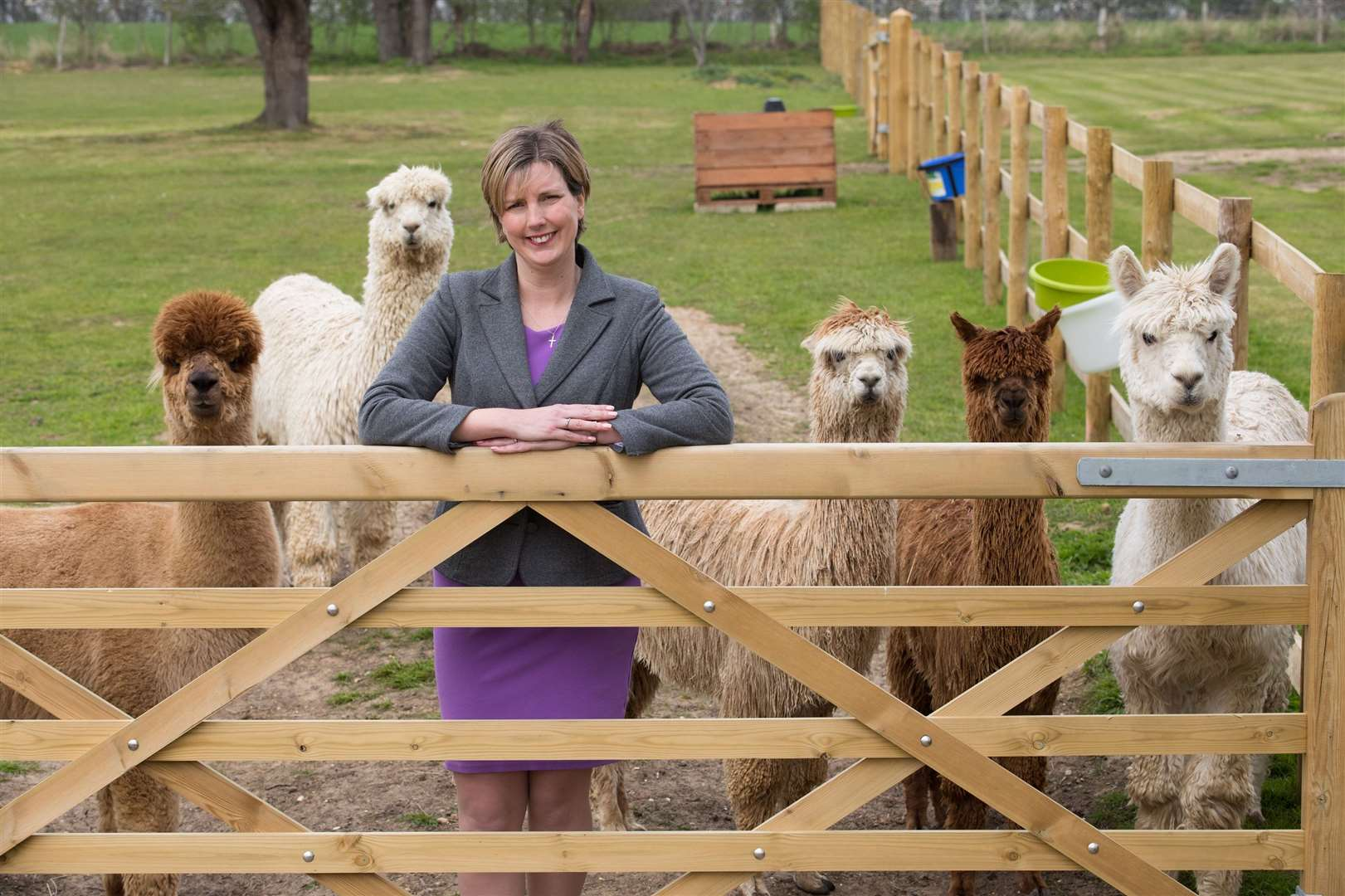 Claire Sweet and her alpacas (13209361)