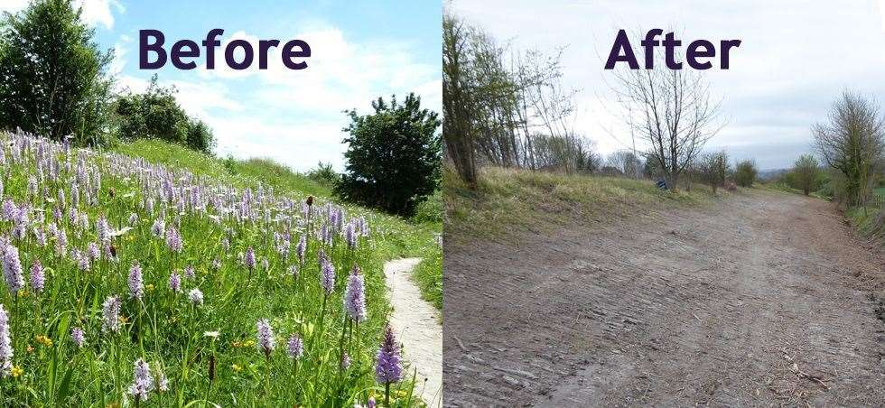 British conservation charity Plantlife posted pictures of Blue Bell Hill Reserve before and after the ditch was made (8592567)