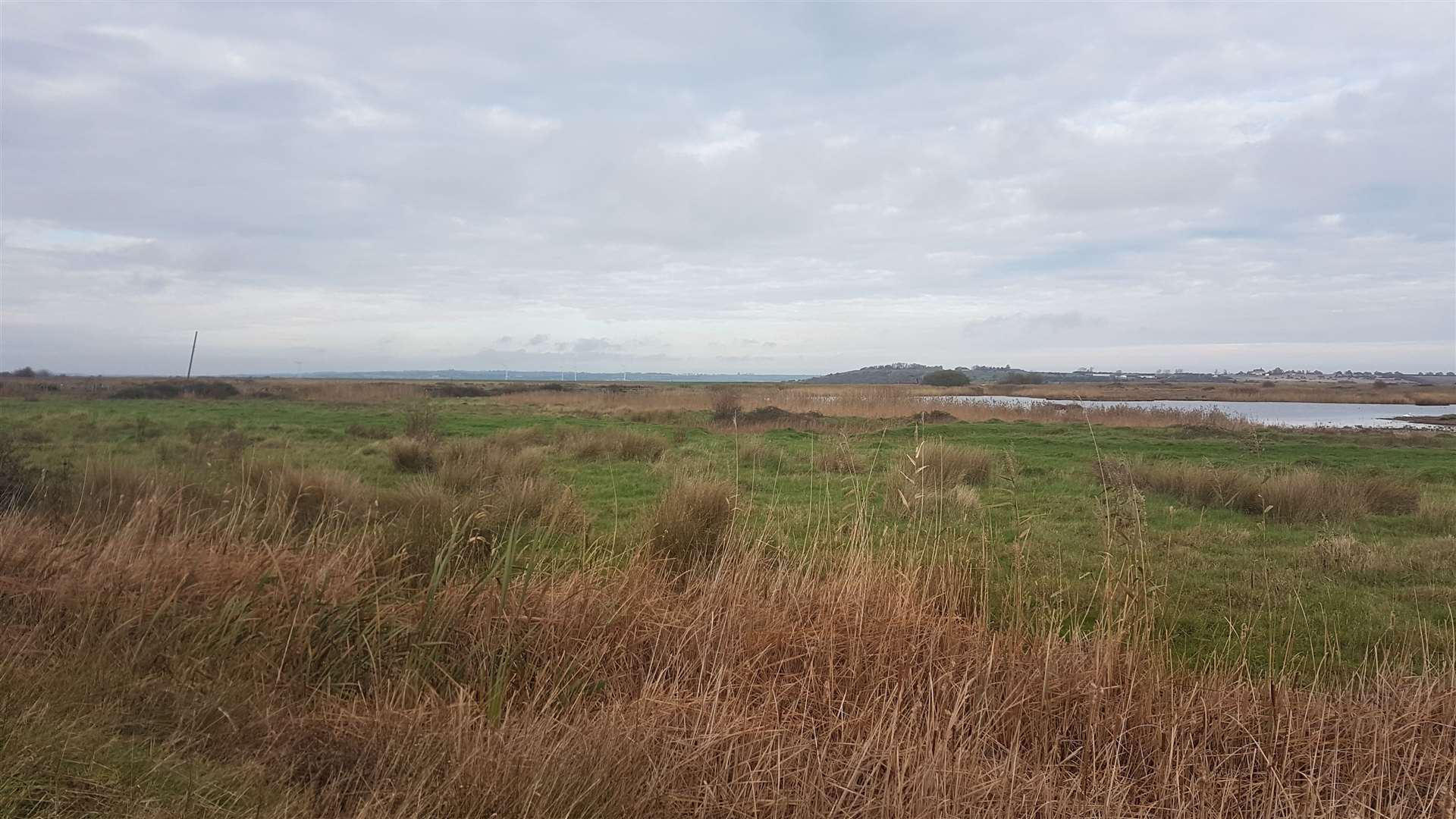 Oare Marshes nature reserve, near to where a body was found