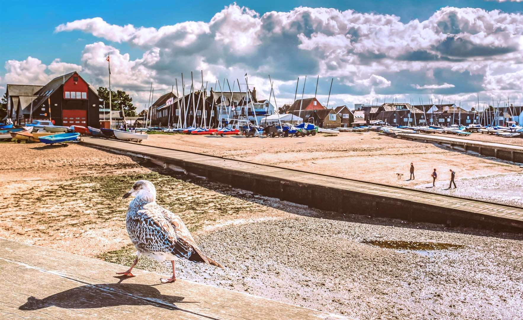 Head to Whitstable for Oyster Festival fun this weekend