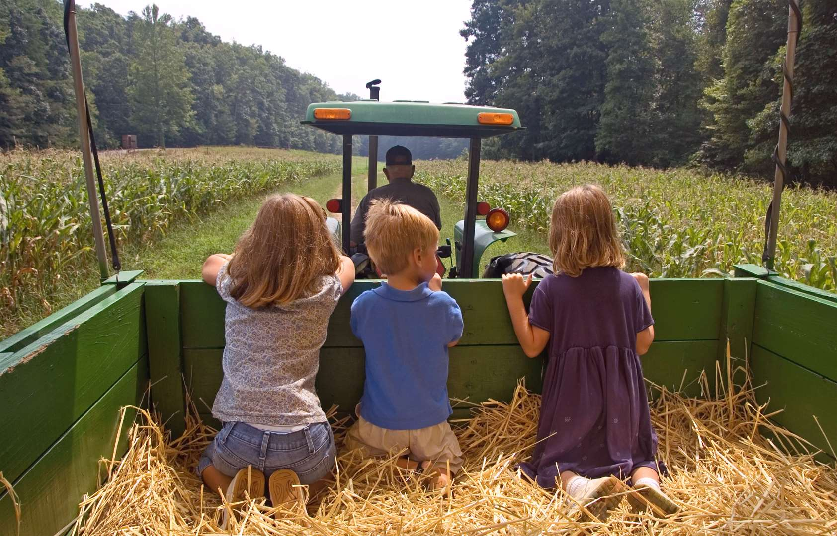 Could a tractor ride be on your family bank holiday list?