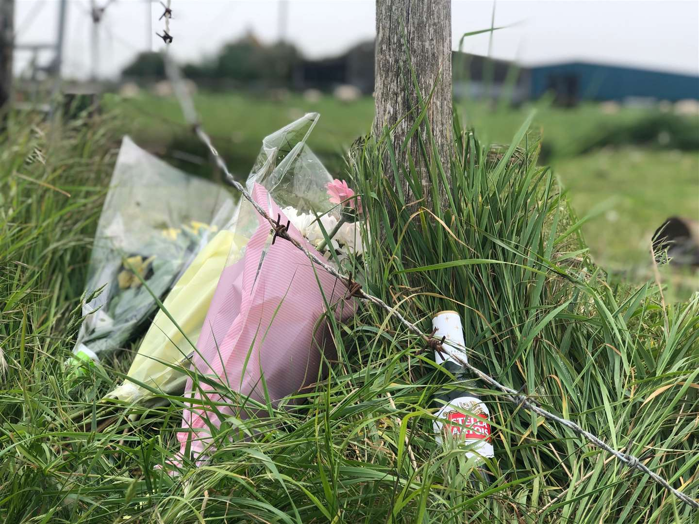 A Stella Artois bottle has been left at the crash scene as a tribute. Picture: Molly Mileham-Chappell (10723272)