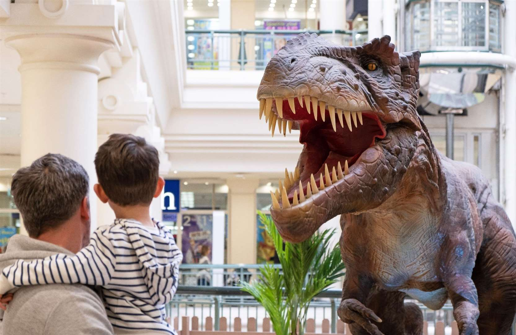 Dino Live at Royal Victoria Place