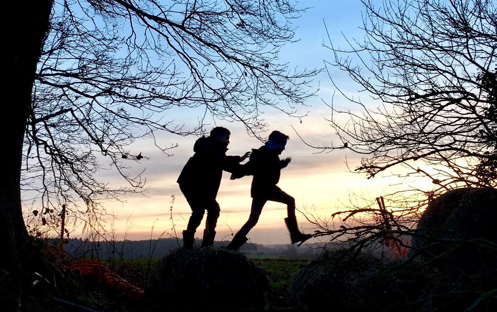 Victoria Harding took this eyecatching picture of her two boys playing in woods at Shepherd's Hill, Selling in January