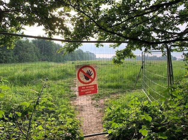 Construction on the pea fields in Barming will mean the loss of more land currently used for dog walking and exercise