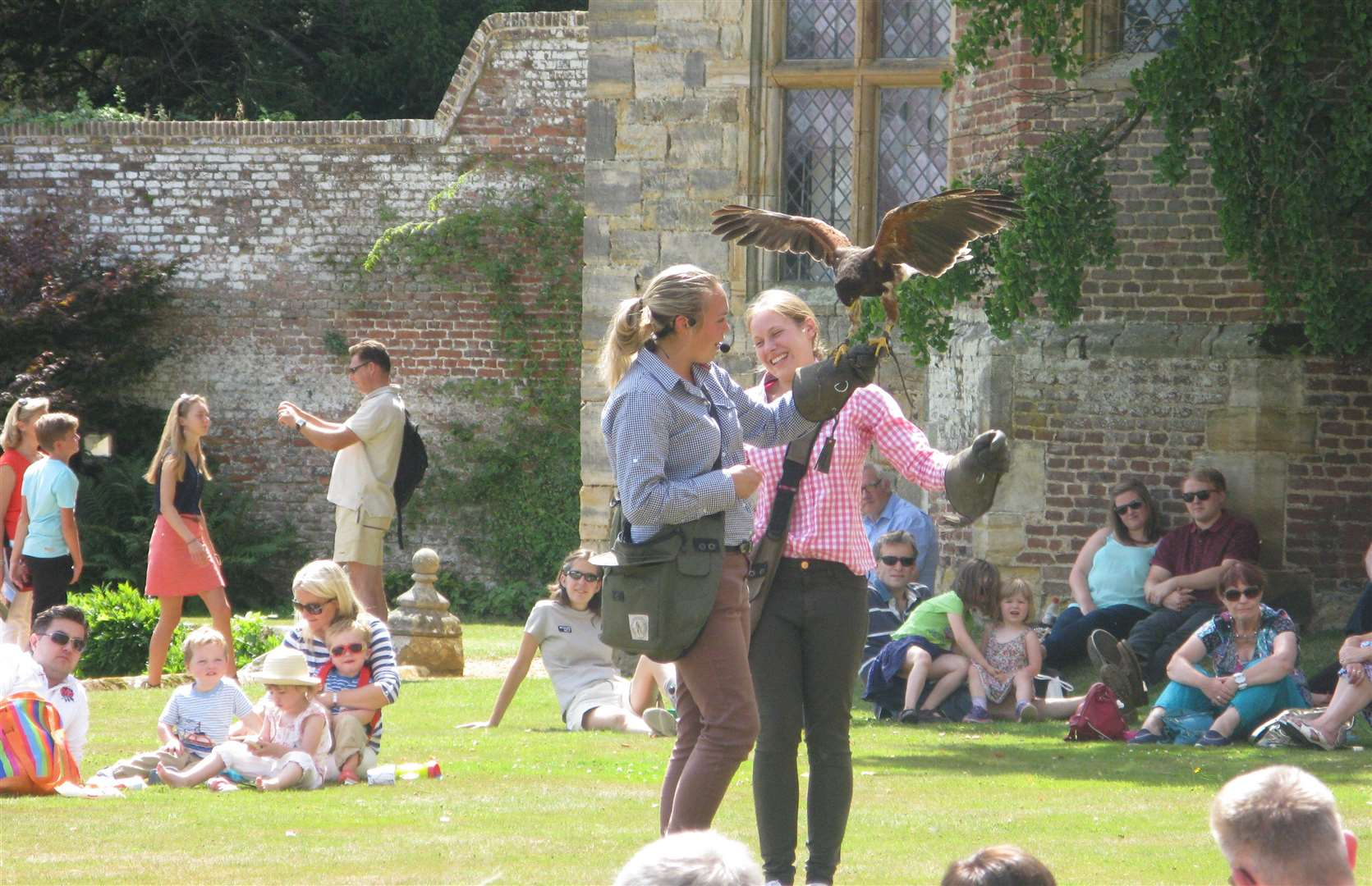 Penshurst Place falconry on Summer Sundays