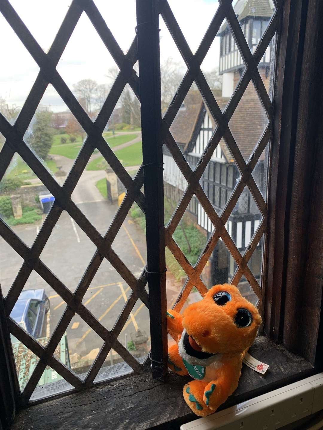 Spike's adventures have kept Maidstone Museum's followers occupied Picture: Maidstone Museum