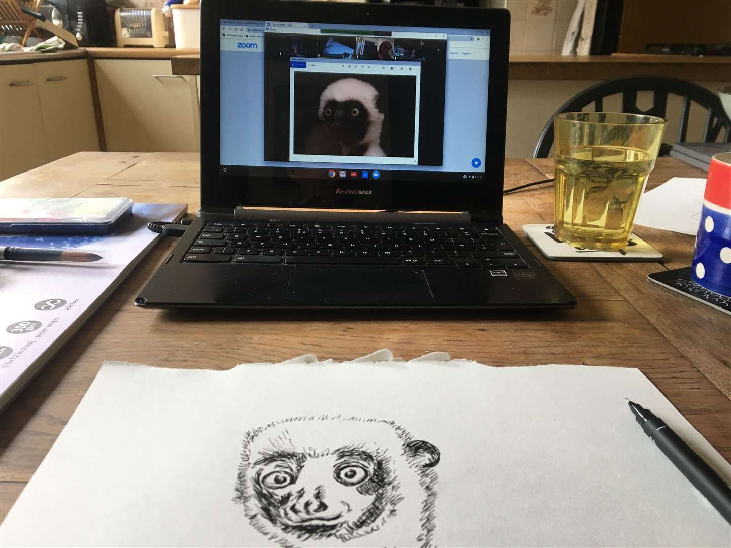 The lemur - how does it look?