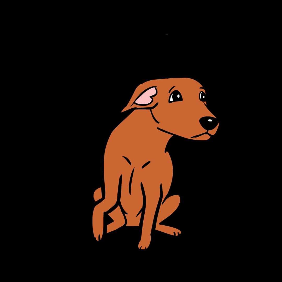 An unhappy dog: Lili Chin
