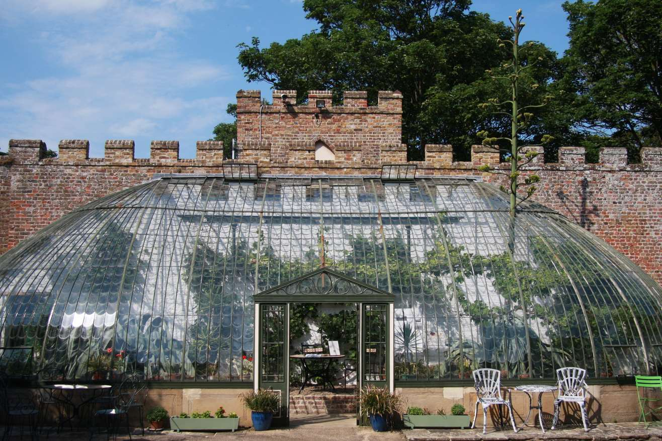 American Agave plant bursts through Italianate Greenhouse in King George VI Memorial Park