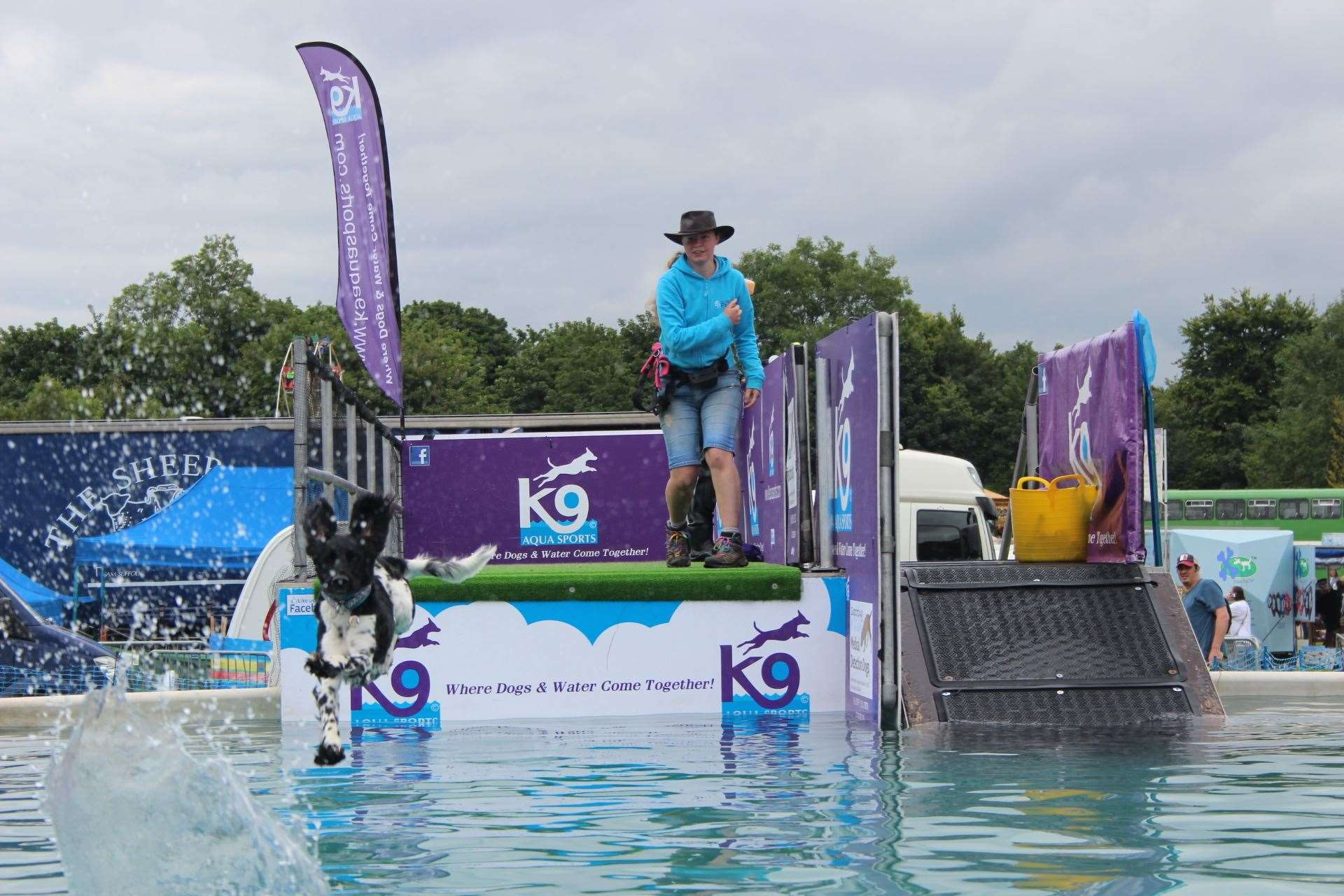 Diving dogs from K9 Aqua Sports were popular with the crowds at the Kent County Show (13545711)