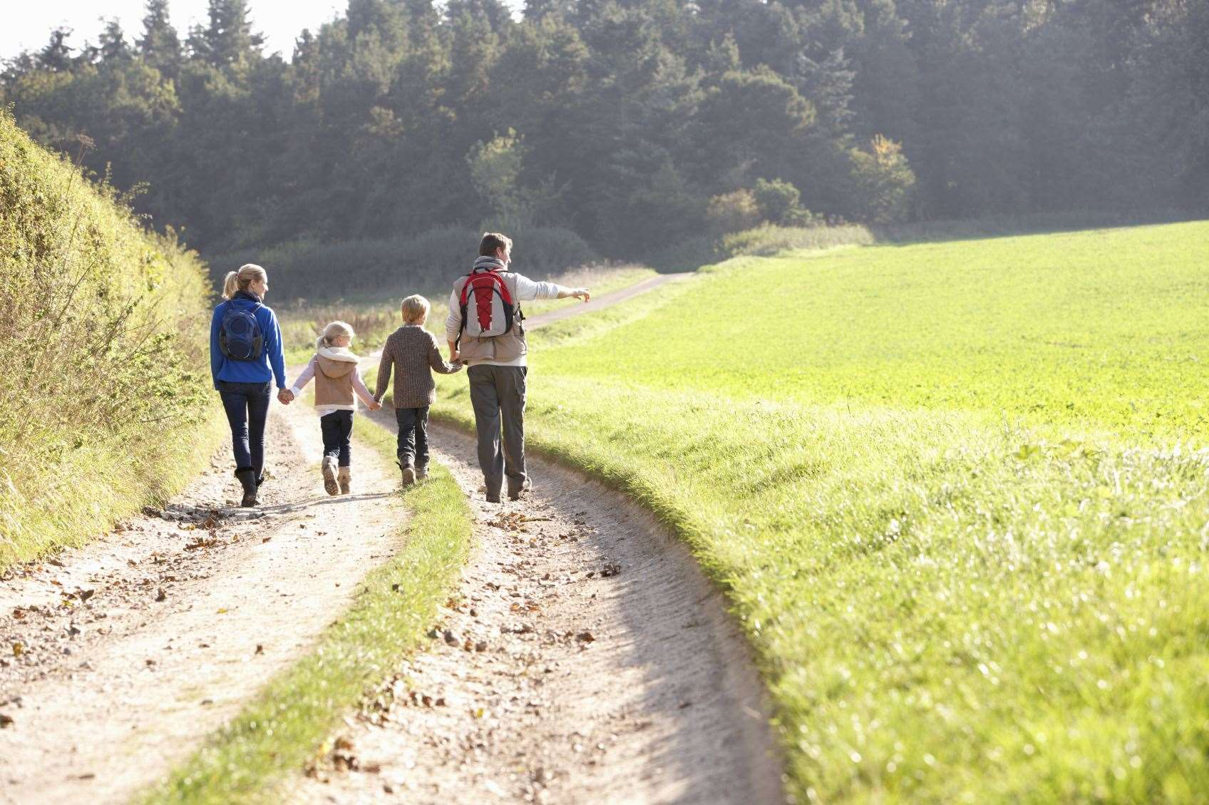The High Weald Walking Festival has gone online