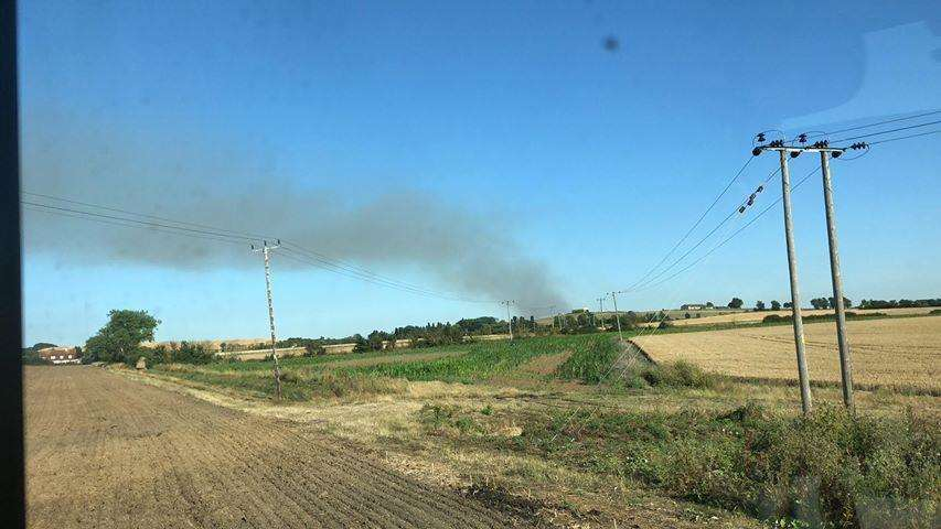Fire crews were called to a field fire in Eastchurch