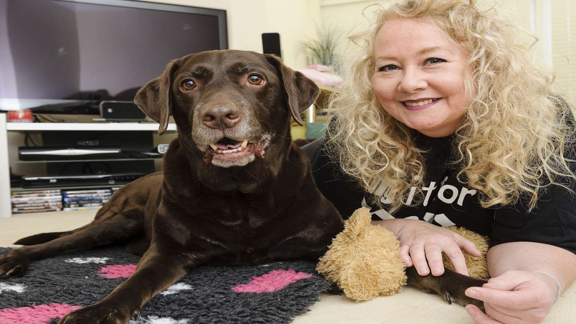 Karen Sydee is doing a fundraising walk, hoping to pay for a KerDOG walker for her paralysed Labrador, Dave.