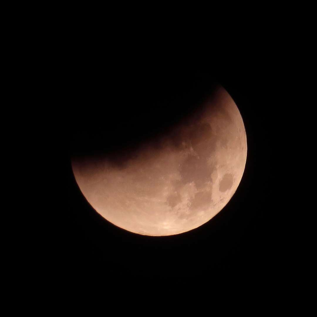 What is super blood wolf moon eclipse of 2019?