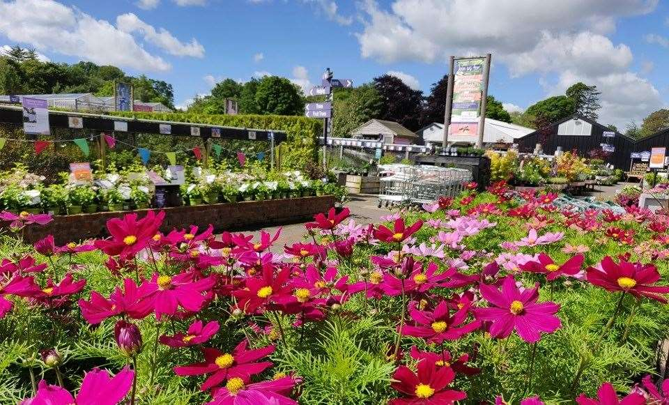 Coolings Garden Centre is open between 9am and 5:30pm from Mondays to Saturdays and 9am to 4:30pm on Sundays.