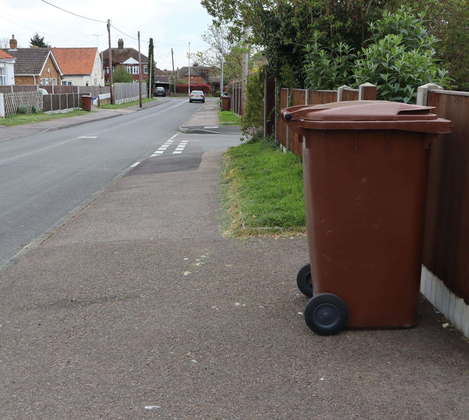 Brown bins are collected on a fortnightly basis across much of the county