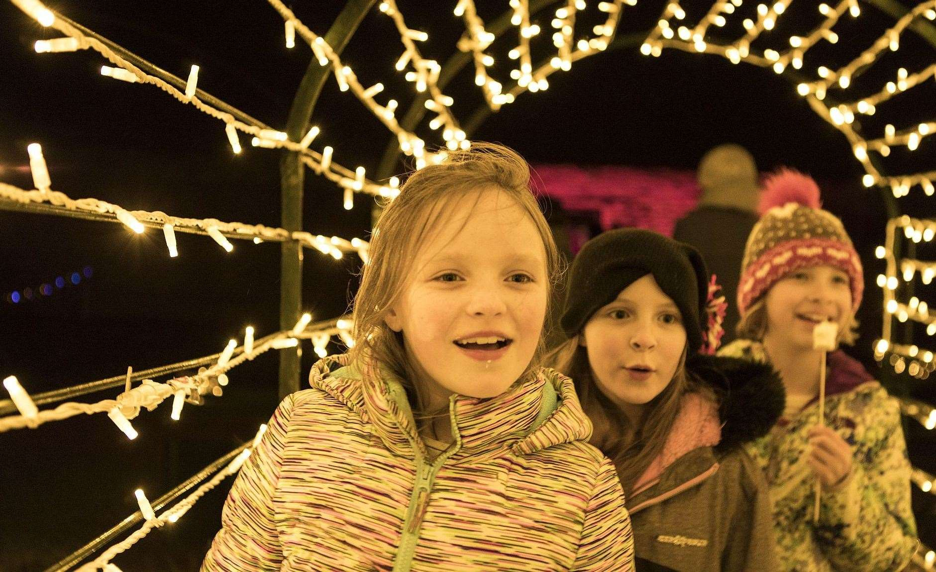 Walmer Castle and Gardens will have a Christmas lights trail