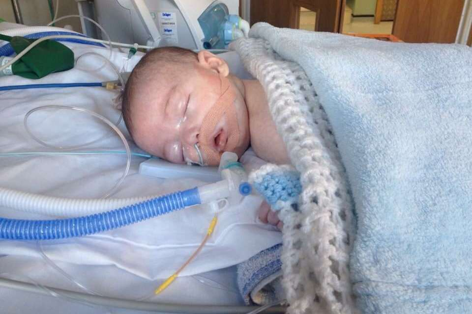 Freddie became ill at Christmas 2014