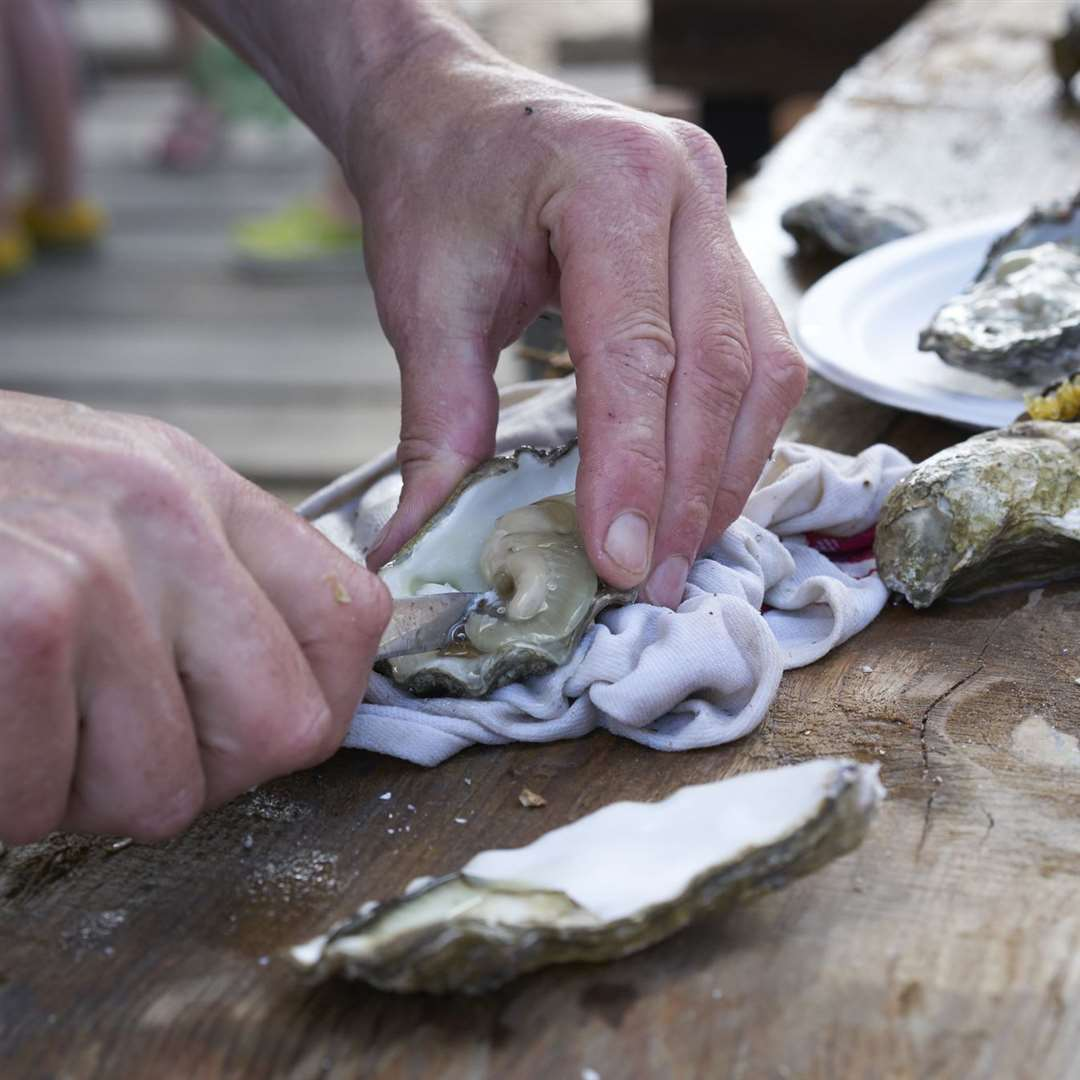 Shucking an oyster in Whitstable Bay