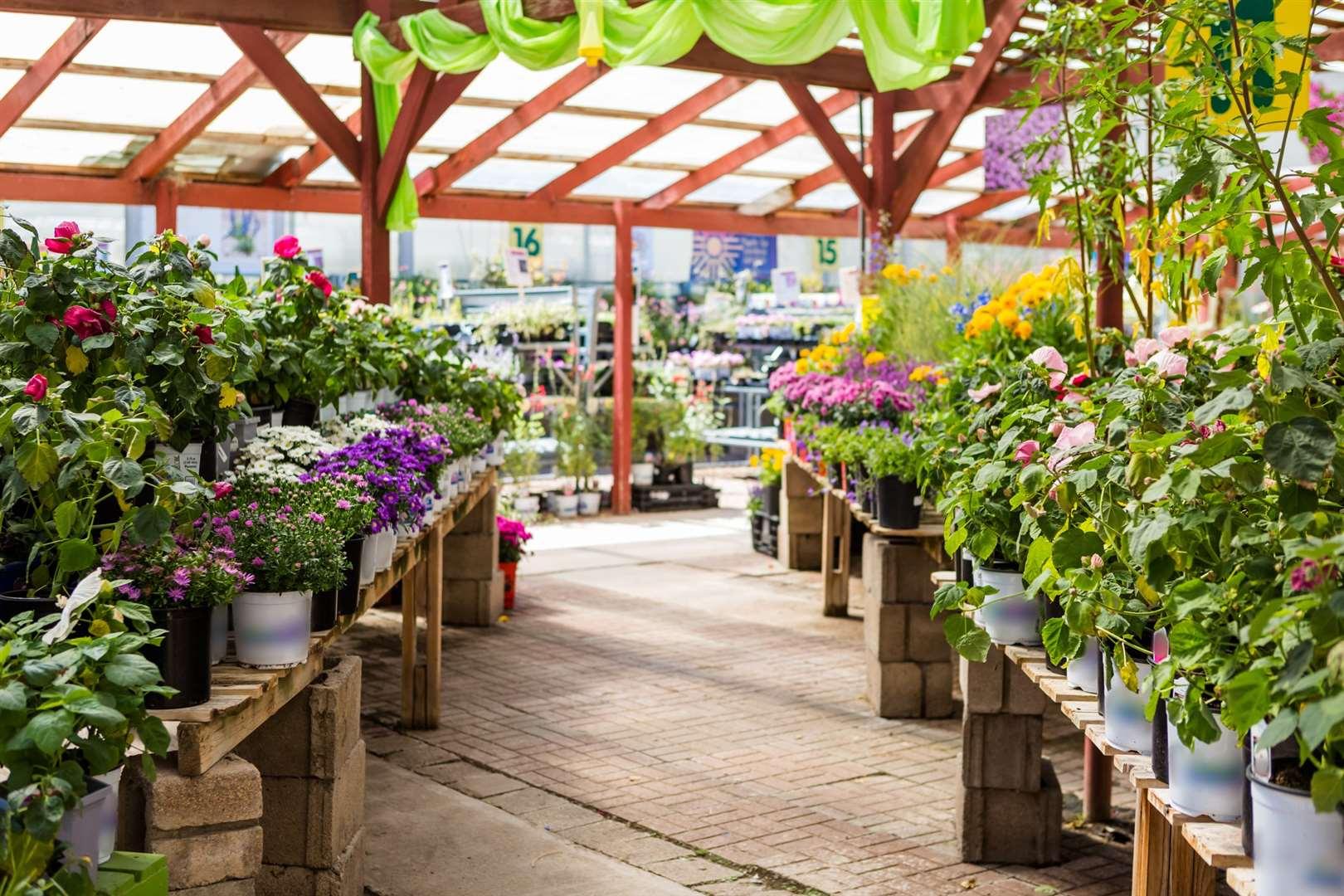 the best garden centres and nurseries in kent. Black Bedroom Furniture Sets. Home Design Ideas