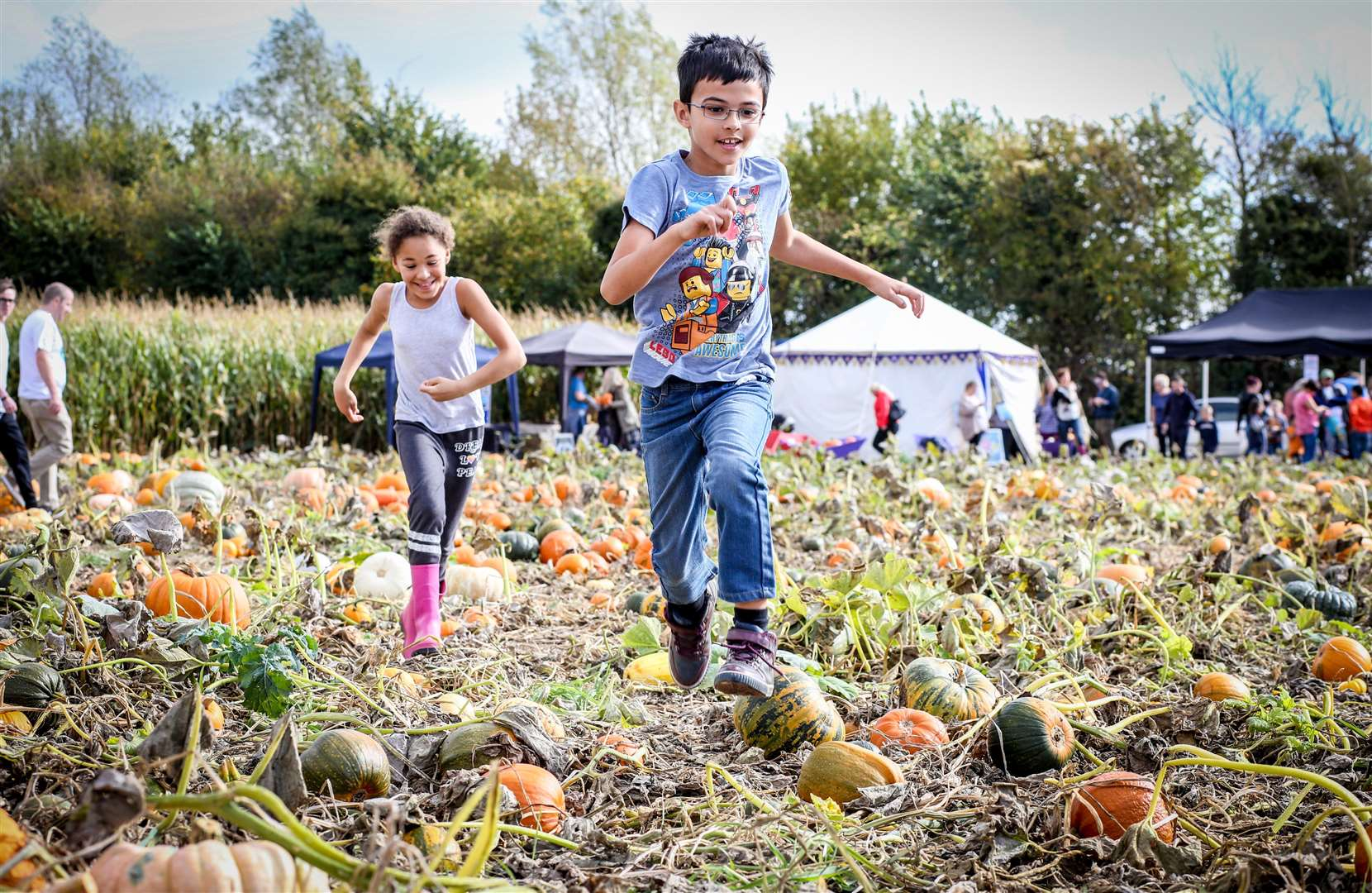 Pick Your Own at Pumpkin Moon last year. Franklin Ram, 8, and Imogen Jones, 8, run through the field. Picture: Matthew Walker