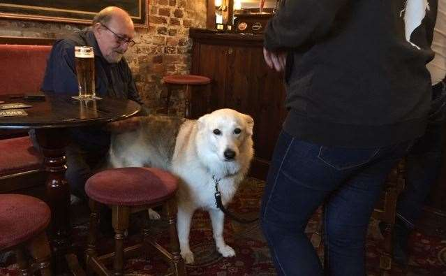 Jasmine is a regular visitor and well known by all the regulars
