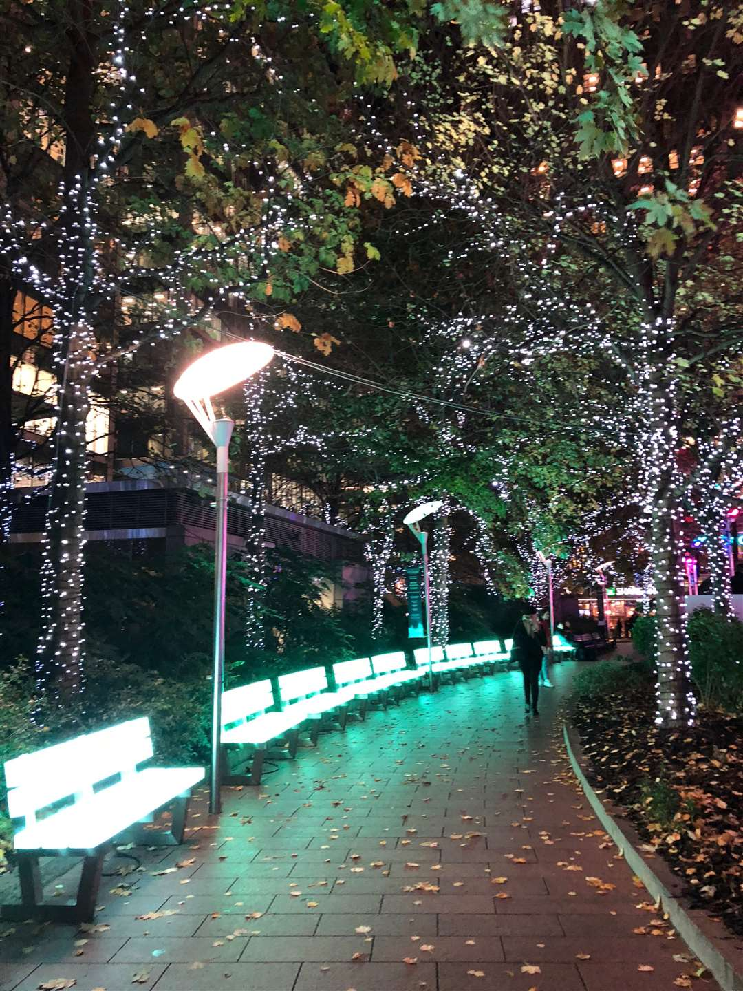 The twinkling lights make for a perfect Christmas setting at Canary Wharf Ice Rink (5185821)