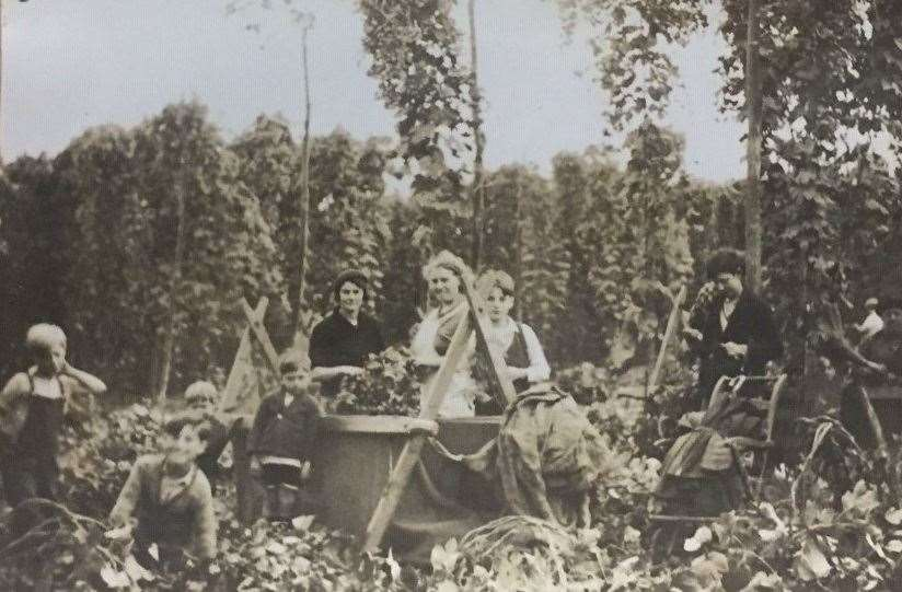 Hop picking at Crowhurst Farm in Kent in 1936. Picture: Kent Archives Service