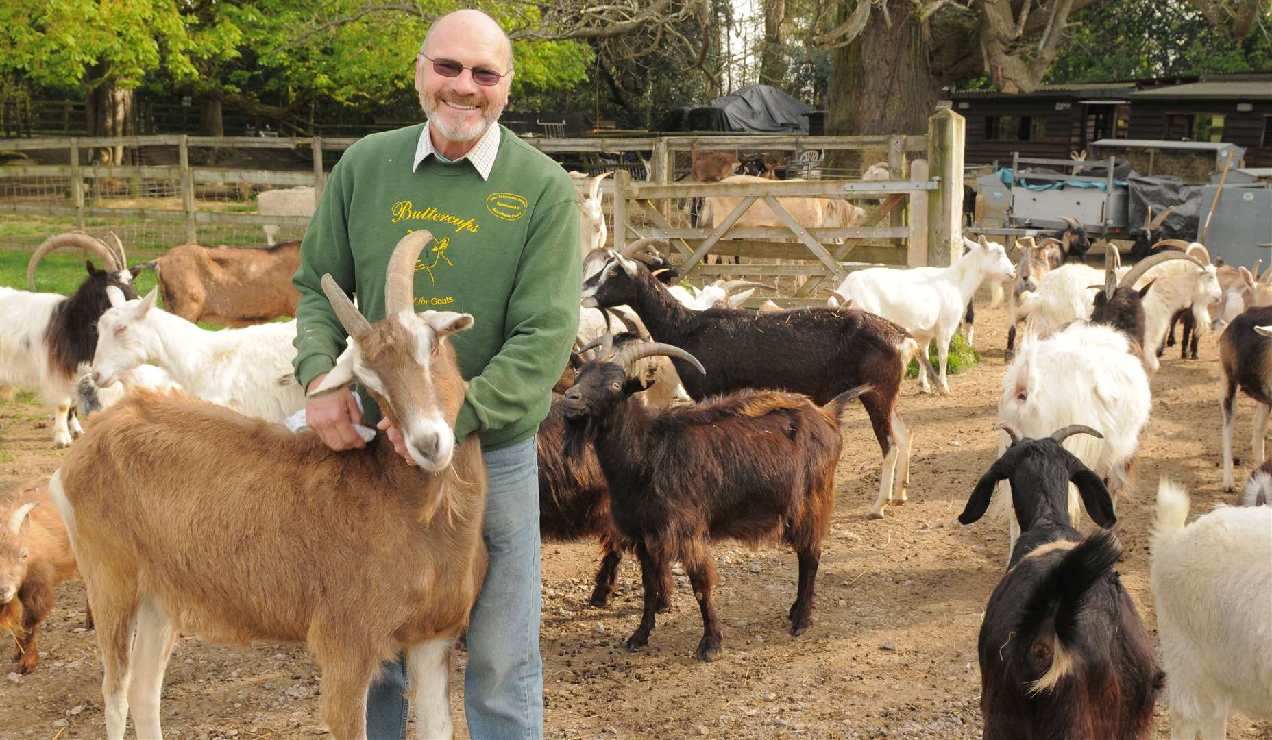 Bob Hitch with his goats. Picture: Steve Crispe