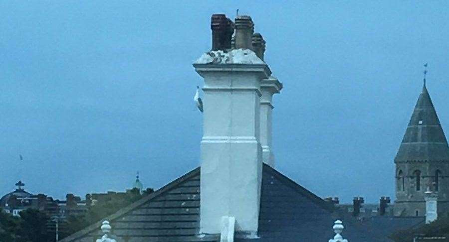 The seagull was stuck on the side of a chimney by its beak. Picture credit: Danny Pope