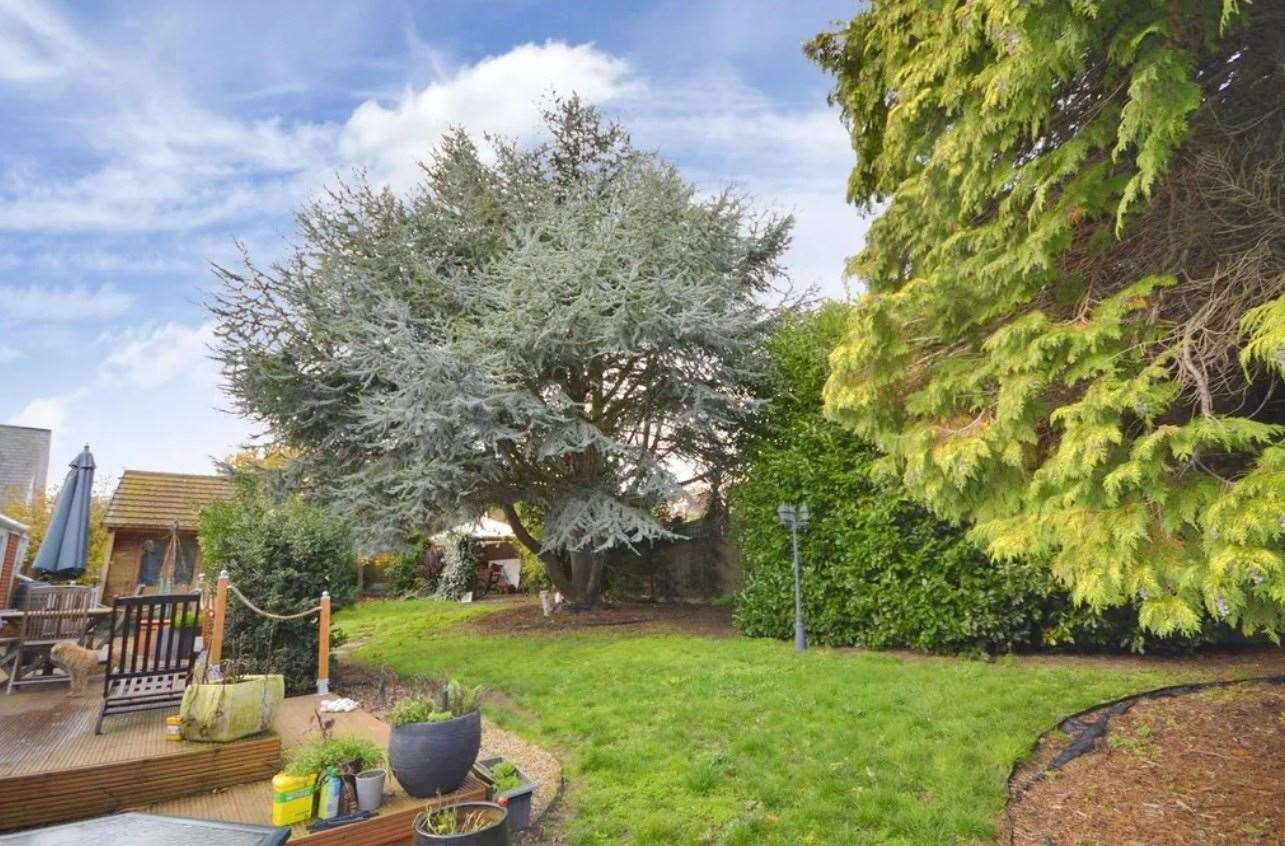 A look at the rear garden. Picture: Zoopla / Zest