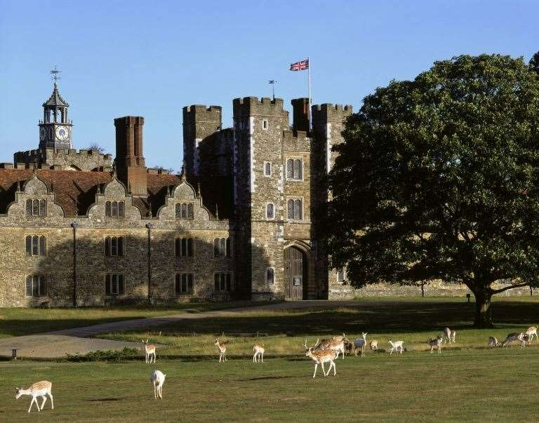 Deer at Knole, Sevenoaks Picture: National Trust