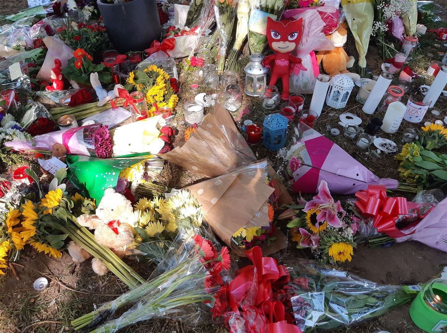 Flowers, cards and candles have been left beneath a tree in Sandwich